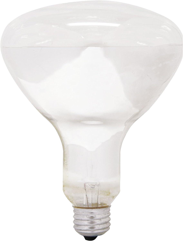 GE Lighting 21256 Soft White 300-watt R40 Light Bulb with Mogul Screw Base, 1-Pack