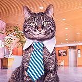 Cheap Namsan Twill Cotton Tie Small Dogs Cats Puppy Tie Neck Tie -Blue/Khaki