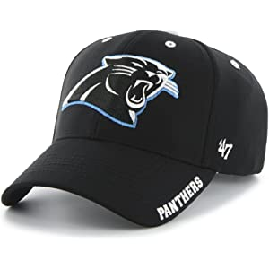 Amazon.com  Carolina Panthers - NFL   Fan Shop  Sports   Outdoors 33a4128d1