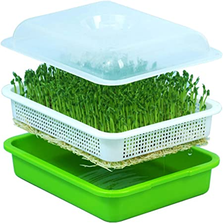 Seed Sprouter Tray Seed Germination Tray BPA Free Nursery Tray for Seedling Planting Suit for Garden Home Office 2 Pack Without Lid
