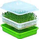 DIY種子スプラウトトレーBPAフリーPP無土壌大容量ヘルシーウィートグラス大豆ムンソーレス保育鉢発芽栽培者植え付け