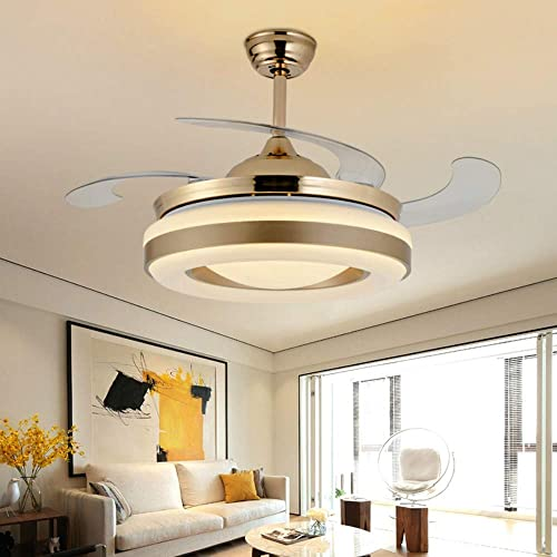 Lighting Groups 42″ Retractable Ceiling Fan
