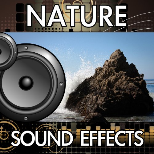 Thunder Sound - 4