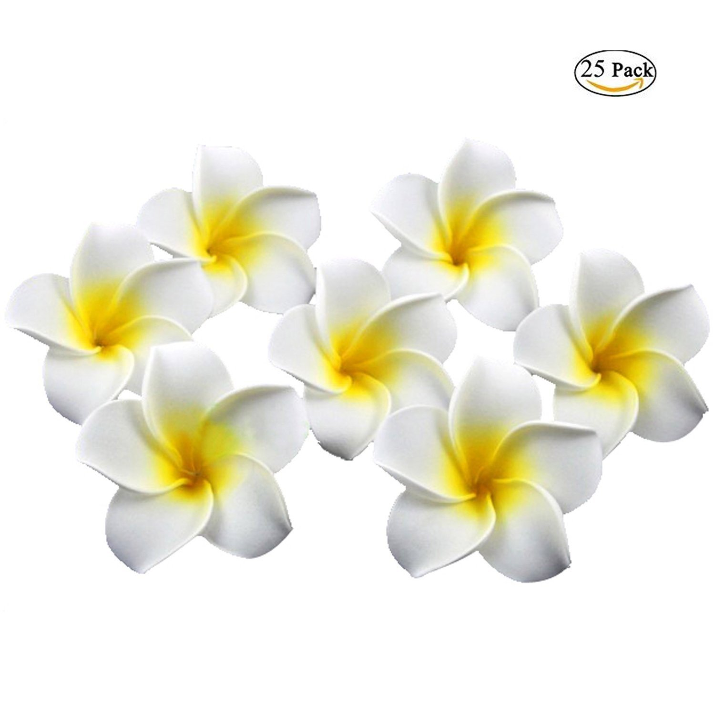 Amazon.com: Plumeria Flowers Artificial Foam Diameter 2.7 Inch Rubra ...