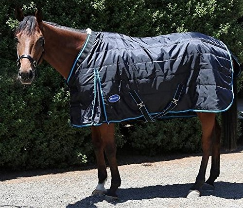 Standard Neck Stable Blanket (Barnsby Equestrian Horse Stable Rug / Blanket - Standard Neck - 420 Denier with 200g Fill Black 78
