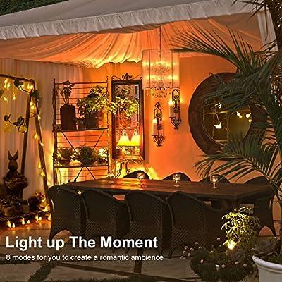 LED fry globe string light for outdoor