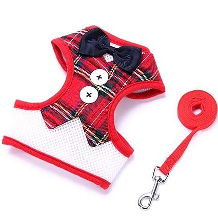 61DDktdfG3L._SX425_ amazon com jim hugh pet dog harness leash set dog vest for small
