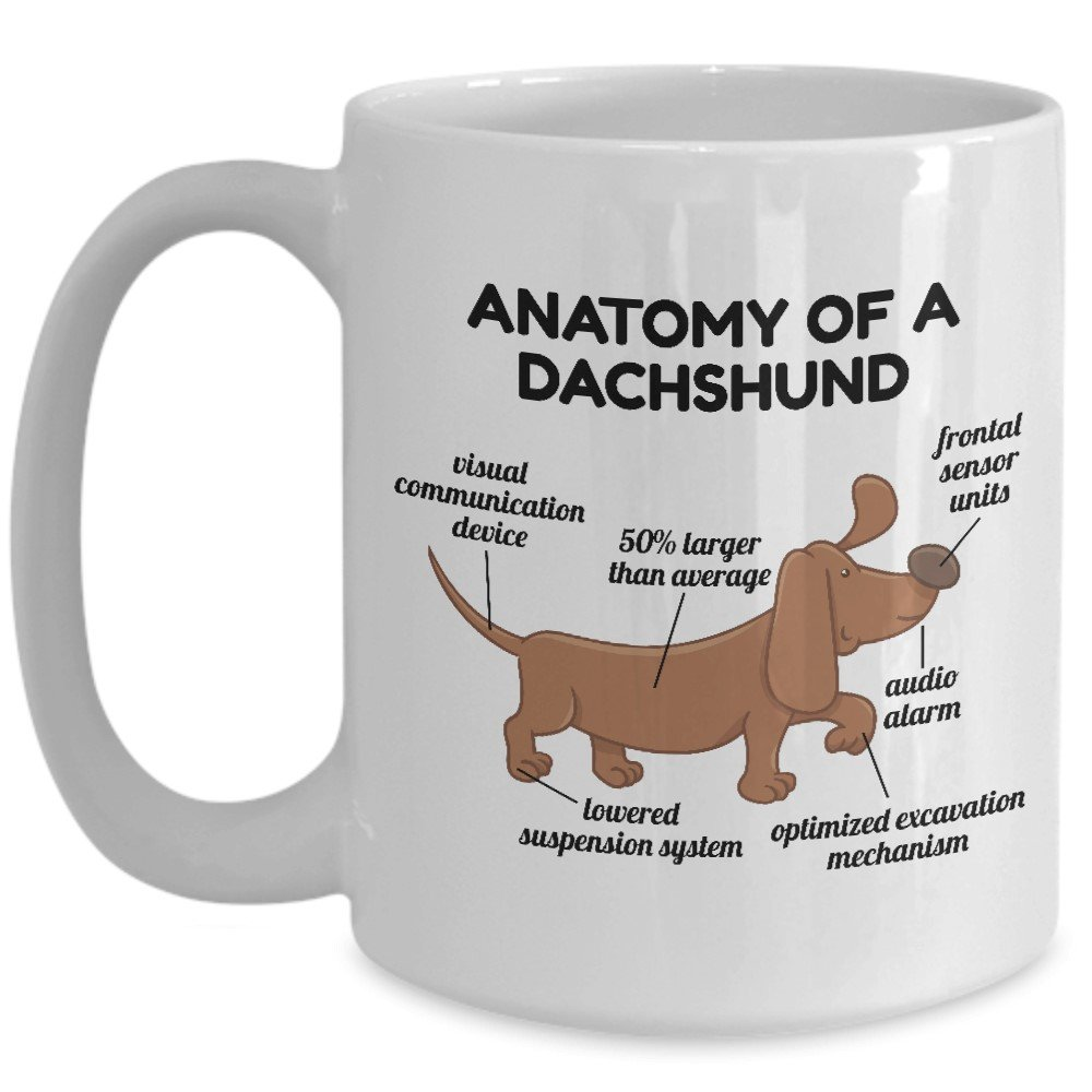 Amazon.com: Dachshund Anatomy Mug Weenie Weiner Dog - Great Funny ...