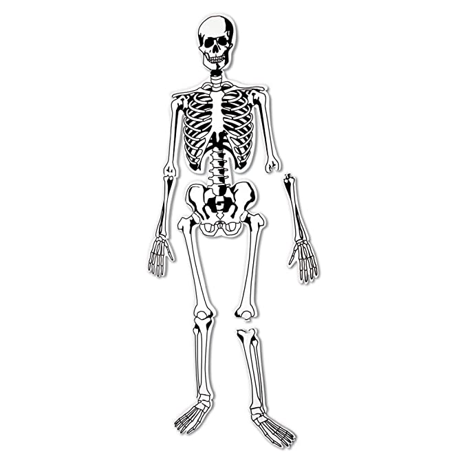 Buy Learning Resources Skeleton Floor Puzzle Online At Low Prices In