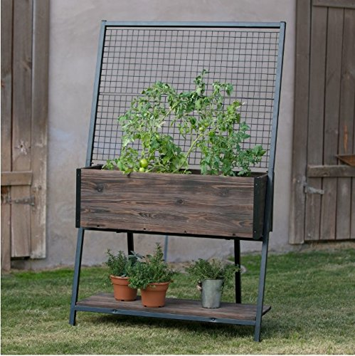 Guthrie Wood Raised Planter with Trellis Made of Steel and China Fir Wood in Dark Brown Wood Finish and Black Metal 40L x 18W x 64H (Guthrie Metal)