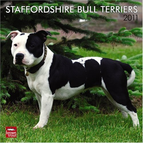 Bull Terrier 2010 Calendar - Staffordshire Bull Terriers 2011 Square 12X12 (English, French and Spanish Edition)