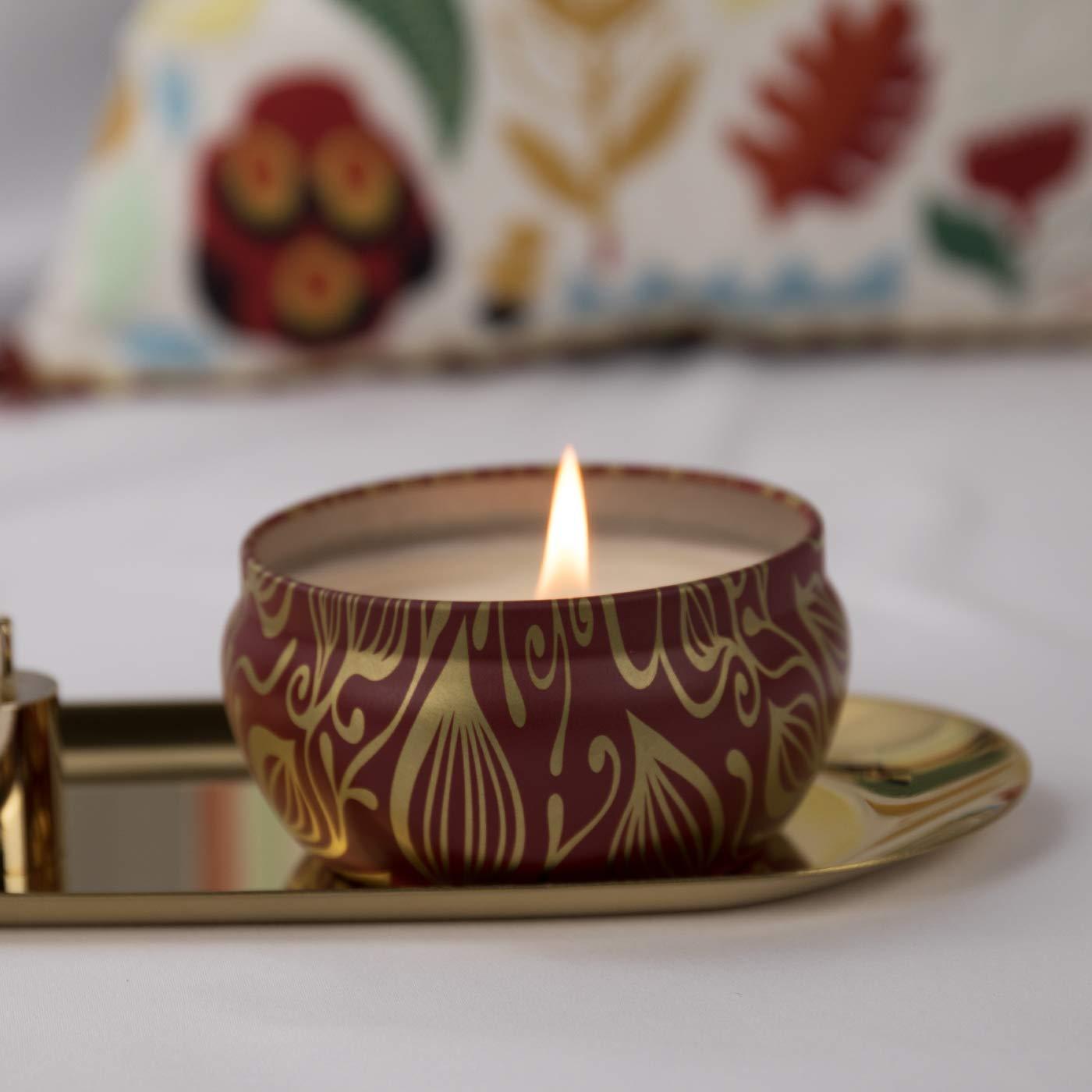 La Jol/íe Muse Duftkerzen 2er Set Geschenk Kerzen Blauer Lotos /& Vanille Kokosnuss 100/% Sojawachs je 185g 45Std