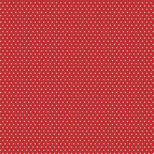 American Crafts Core'dinations 12 Pack of 12 x 12 Inch Patterned Paper Red Small Dot, ()