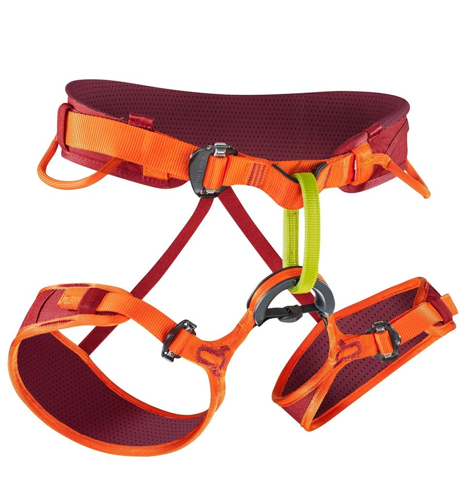 EDELRID Jay Climbing Harness - Men's Vinered/Lollipop Large by EDELRID