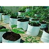 Casa De Amor Large Poly Grow Bags /UV Treated 100% Virgin Polyethyene Material - Looking White Outside / Black Inside - 20 Bags
