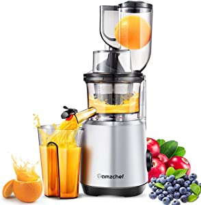 AMZCHEF Professional Slow Juicer, Vegetable & Fruit Juicer Machine, Two speeds, Silent motor ≤60dB, Cleaning brush & Juice jug Include, (150 Watts/Silver grey)