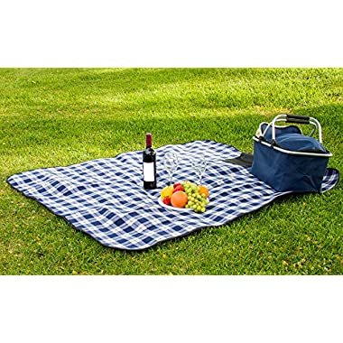 All Purpose Picnic Blanket - Soft Plush Outdoor, Beach, Travel, Camping Fleece Throw Blanket 50x60 Inches (Blue Plaid)