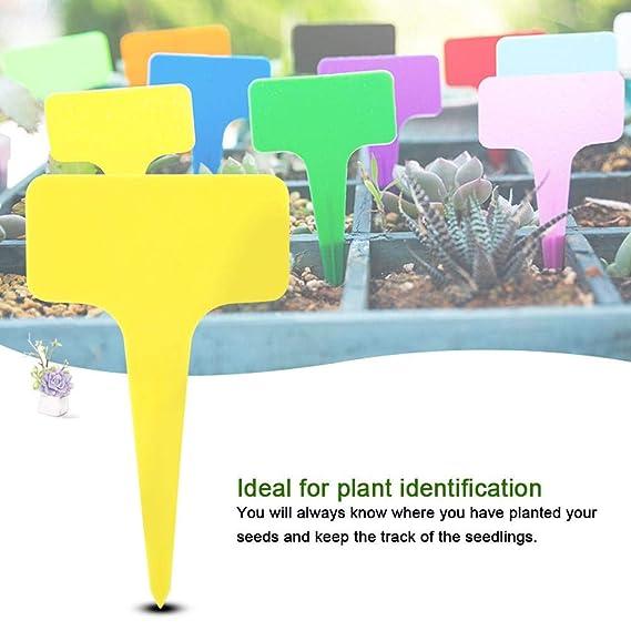 Etiquetas de plástico para plantas 50 PCS Impermeables PVC T-tipo ...