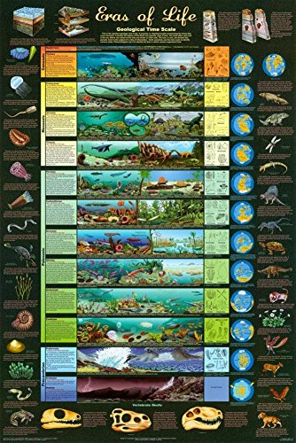Eras of Life Geological Time Scale Educational Science Chart Poster 24 x 36