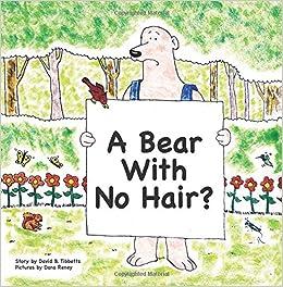 the bear with no hair david b tibbetts dana reney 9780692811344