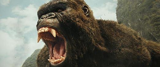 Kong : Skull Island [Francia] [DVD]: Amazon.es: Tom Hiddleston, Samuel L. Jackson, Brie Larson, John C. Reilly, John Goodman, Corey Hawkins, John Ortiz, Tian Jing, Jordan Vogt-Roberts, Tom Hiddleston, Samuel L. Jackson:
