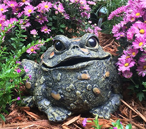 HomeStylesToad Hollow Large Toad Natural ()