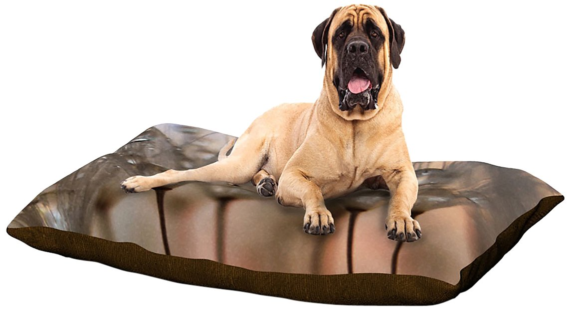 X-Large 40\ Kess InHouse Alison Coxon Forest Fern Green  Fleece Dog Bed, 50 by 60 , Plant