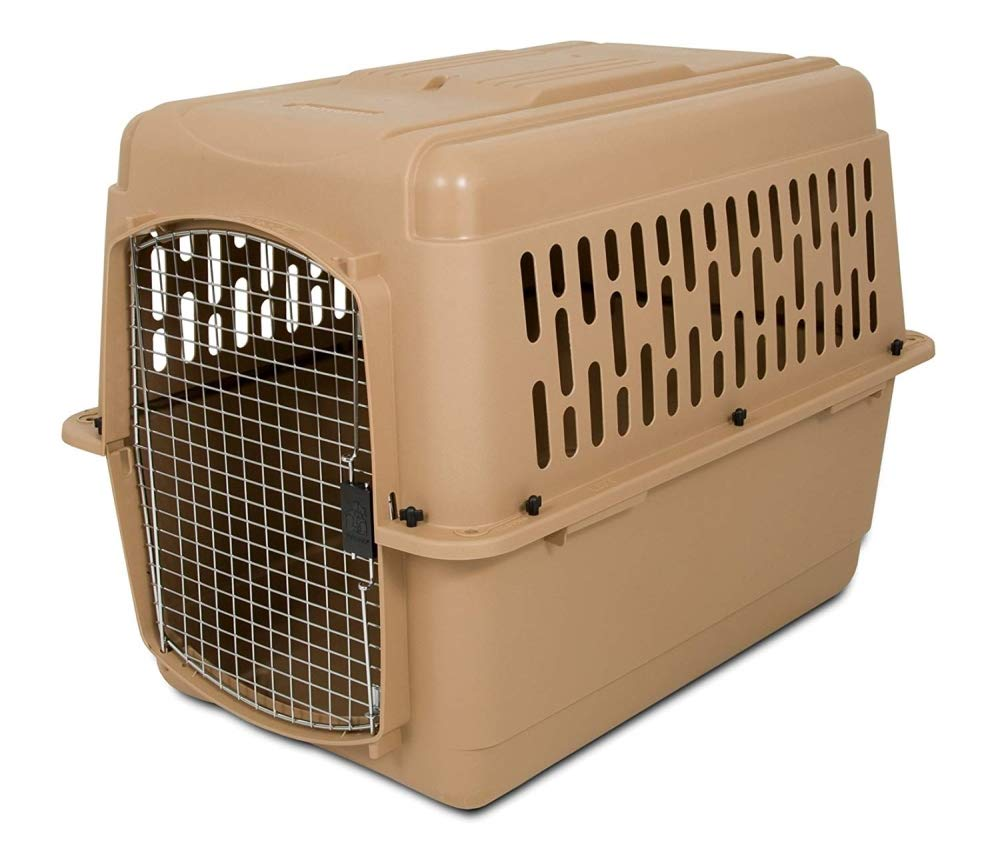 Petmate 21094 Pet Taxi Kennel, for Small Pets 7 to 9-Inch Tall (Blue Air/Spa Teal)