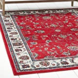 Home Dynamix Premium Muse Area Rug by Traditional Style Living Room Area Rug | Persian-Inspired Design with Floral Vine Border | Classic All-Over Print | Red, Cream 5'2 x 7'4