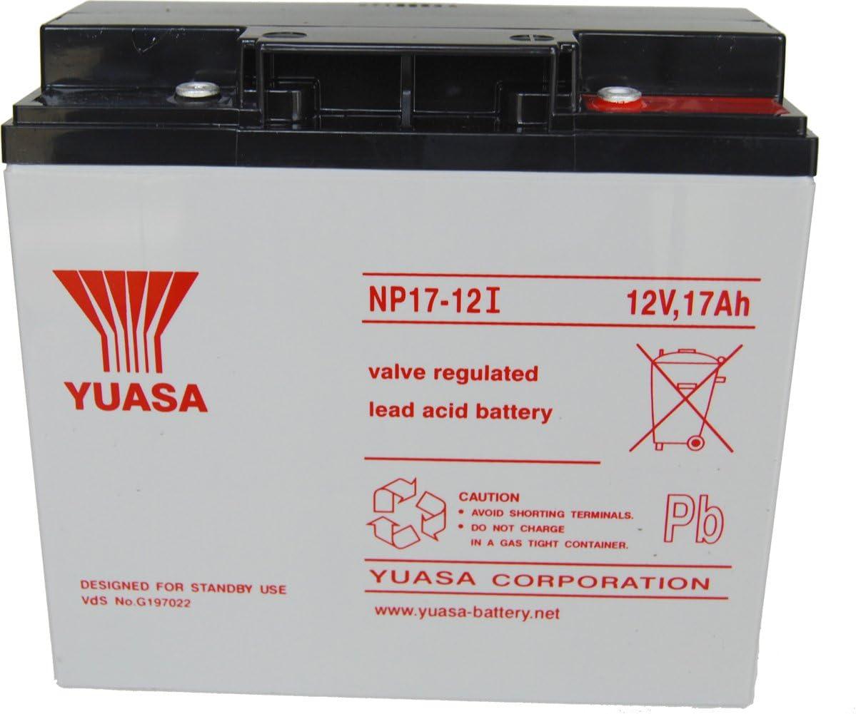 Yuasa NP17-12 Battery: Amazon.co.uk: Camera & Photo