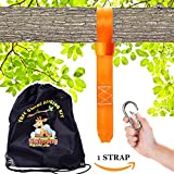 Tree swing hanging kit - Extra long strap (10 ft) Extra STRONG (2500lb). Perfect for hammocks, tree swing sets, disk swings and better than swing ropes.