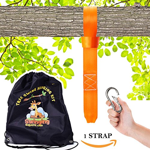 - Tree swing hanging kit - Extra long strap (10 ft) Extra STRONG (2500lb). Perfect for hammocks, tree swing sets, disk swings and better than swing ropes.