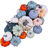 24 Pcs Bulk Assorted Rustic Harvest Artificial Blue Pumpkins Foam Pumpkin in White Orange Green Teal for Fall Autumn…
