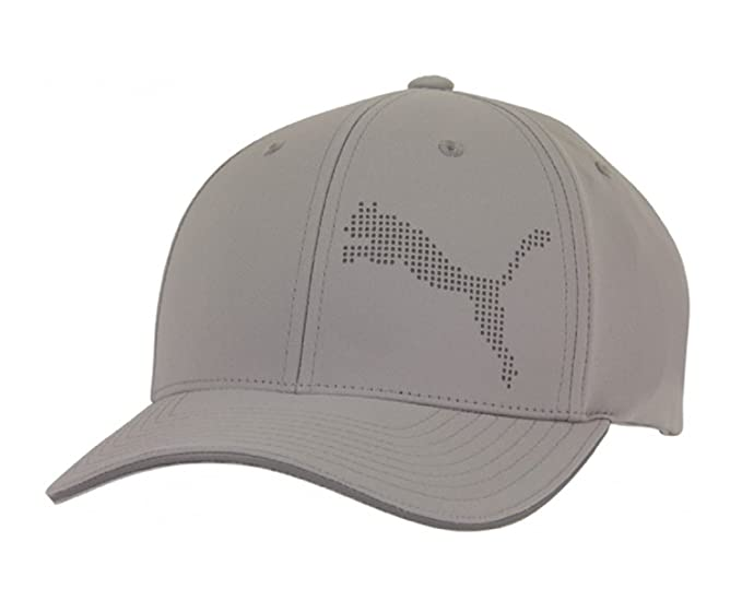 70e78e37b17bd ... promo code for puma mens performance perforated flexfit hat small  medium asphalt e44c4 c6898