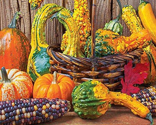 Springbok Puzzles Harvest Colors Jigsaw Puzzle (1000 Piece)