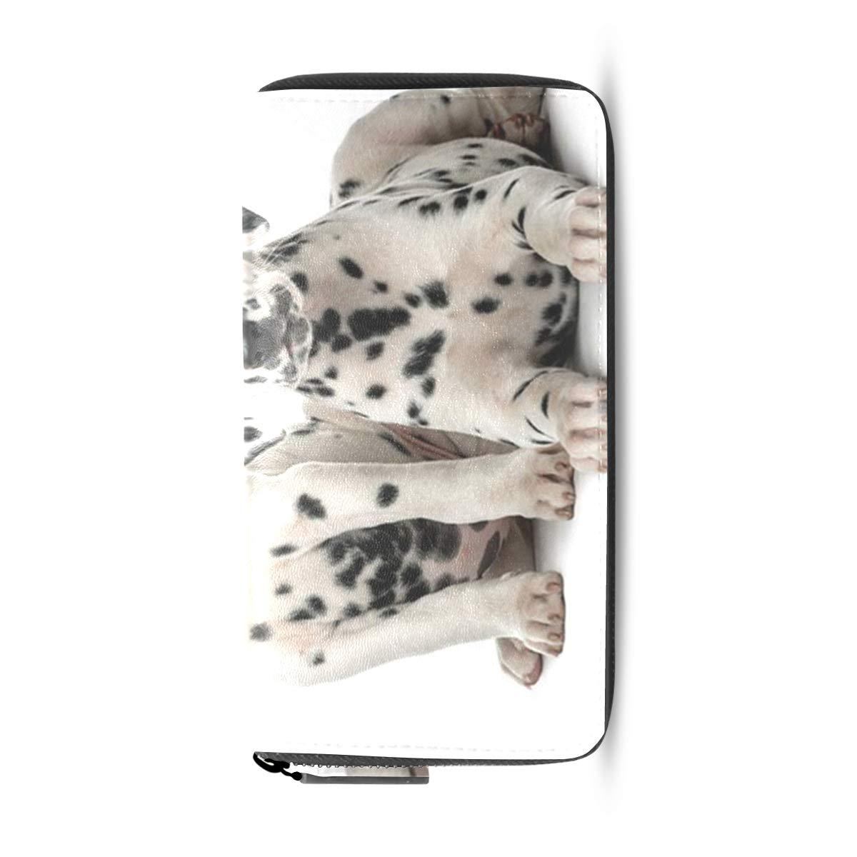 Womens Wallets Dalmatian Dog On The Mountain Leather Passport Wallet Coin Purse Girls Handbags