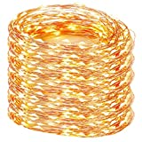 Decute 328 Feet 1000 LED Copper Wire String Lights Christmas Lights Fairy with UL Listed for Party Wedding Bedroom Christmas Tree, Warm White