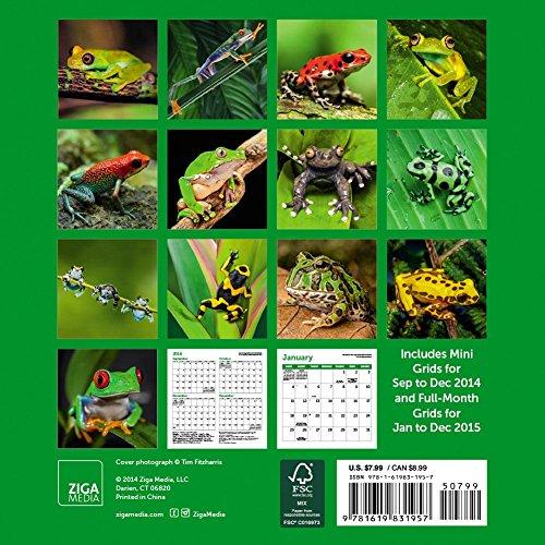 2015 Frogs Mini Wall Calendar Ziga Media, LLC