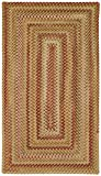 Capel Rugs Manchester Rectangle Braided Area Rug, 2 x 3, Gold Hues