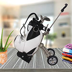 WLOOD Golf Pens with Golf Bag Holder,Novelty Gifts with 3 Pieces Aluminum Pen Office Desk Golf Bag Pencil Holder for Men Fathers Day,Golf Gifts for Golfer Fans Coworker (White and Black w/o base)
