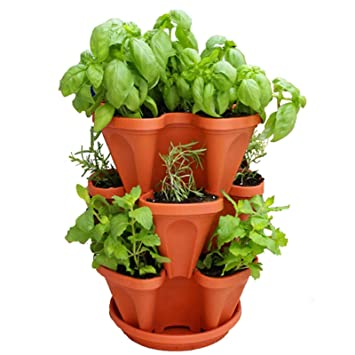 Amazon Com Living Whole Foods Stackable Garden Planter A Stacking