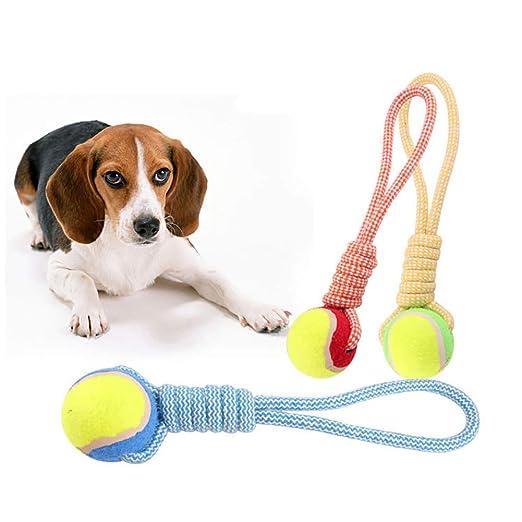 Accesorios para perro, pelota de tenis para perro, cuerda de ...