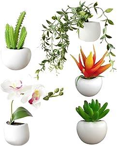 EKIMI Artificial Flower Fake Succulent Plant Refrigerator Magnet Sticker Bonsai Green Plan DIY Home Decoration 5 Pcs