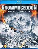 Snowmageddon on