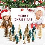 AerWo 24PCS Artificial Mini Christmas