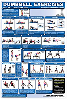 Laminated Dumbbell Exercise Poster Chart Lower Body Core Chest