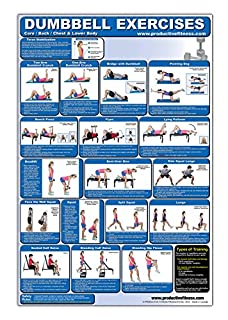 Laminated Dumbbell Exercise Poster/Chart - Lower Body/Core/Chest/Back - Created by Fitness Experts with University Degrees in Exercise Physiology - Fitness Poster - Dumbbell Workout Chart (0973941146) | Amazon Products