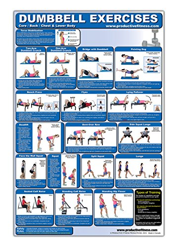 (Laminated Dumbbell Exercise Poster/Chart - Lower Body/Core/Chest/Back - Created by Fitness Experts with University Degrees in Exercise Physiology - Fitness Poster - Dumbbell Workout Chart)
