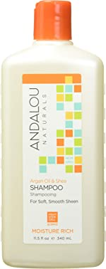 Andalou Naturals Argan Oil & Shea Moisture Rich Shampoo, 11.5 Ounce