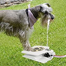 """iMounTEK Hygienic Dog/Pet Geyser Water Fountain (41"""" Hose, Prevents Your Pet From Drinking Stagnant Water, Paw Design, Durable Steel, Water Safe, Encourages Drinking)"""